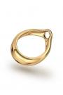 Adonis Prince Albert 6 Glans Ring, Gold