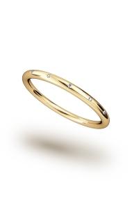 Hektor Shine Cock Ring, Gold